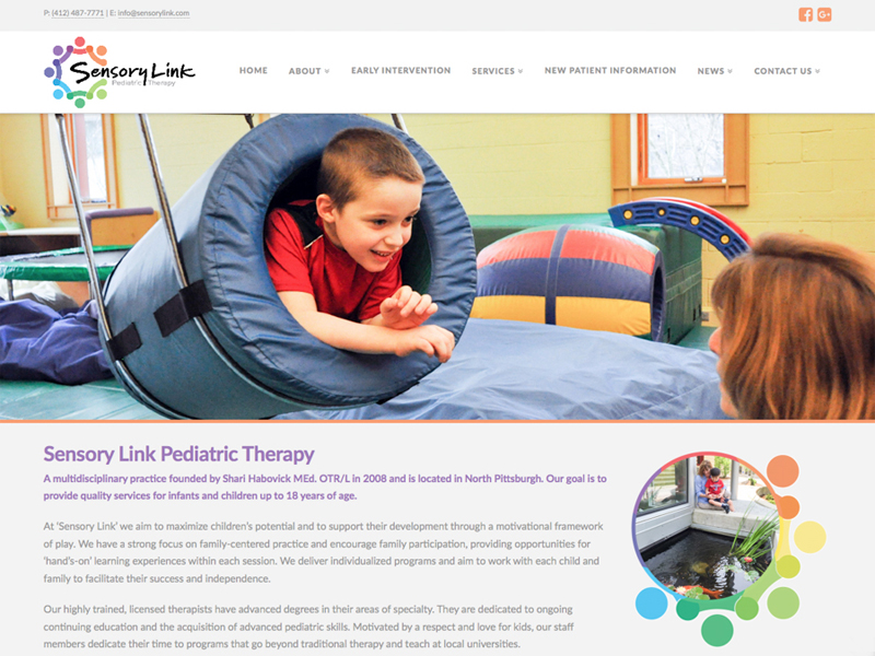 website-design-by-thinktwin-Pittsburgh-12